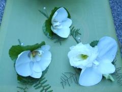 Phylanopsis Wedding Aug 08 (2)