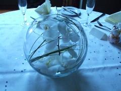 Phylanopsis Wedding Aug 08 (7)