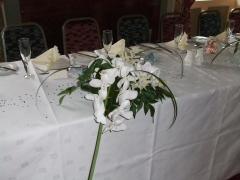 Phylanopsis Wedding Aug 08 (9)