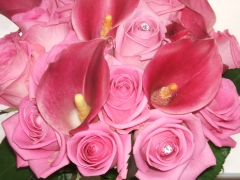 Sample Pink Calla Weddin (3)