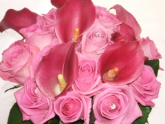 Sample Pink Calla Weddin (4)