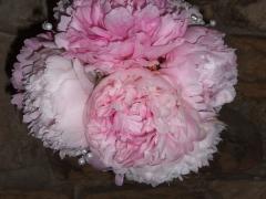 Pink Peony Pomanders (4)