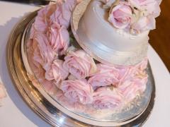 Sarah's Wedding (1)