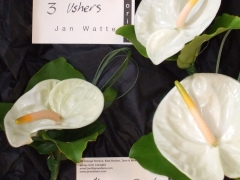 Anthurium Wedding Aug 06 (5)