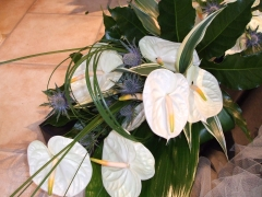 Anthurium Wedding Aug 06 (9)