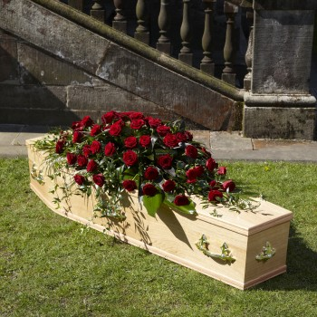 Red / White / Pink / Yellow Rose Coffin Spray