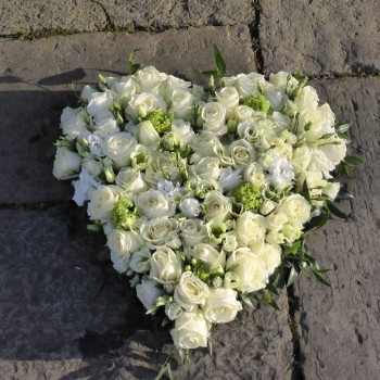 Luxury White Rose  Solid Heart (4)