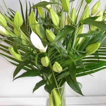 Lushious Lilies (1)