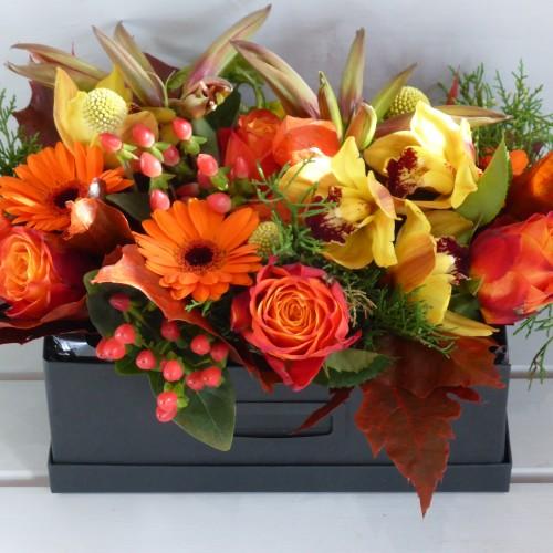 Vibrant Autumn Box 1
